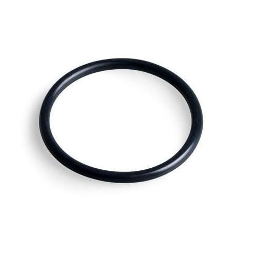 Gasket OR 3100 - Cod. 02001240